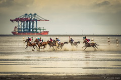 Low tide at the Elbe - Germany (Anneke Jager) Tags: annekejager canon horses boat boats kust kste water wasser waterkant wattrennen sport seaside cuxhaven elbe germany riding outdoor paardensport pferdesport duhnenwattrennen
