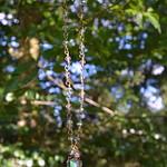 DSC_0855-1 thumbnail