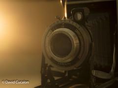 Camera lights (David Cucaln) Tags: davidcucalon cucalon stilllife bodegon oldcamera camera macro ligths luces warm calido vintage retro