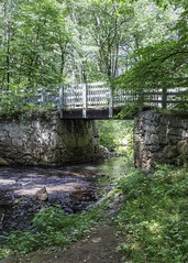 Mines Falls (Linda Kosidlo) Tags: odc minesfalls newhampshire woods trails hiking water river bridge