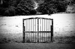 Wer einen guten Nachbar hat, braucht keinen Zaun. (Knarfs1) Tags: zaun fence tor gate bw monochrom