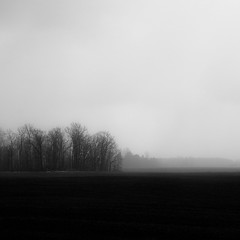 Vanishing Landscape 011 (noahbw) Tags: d5000 nikon abstract blackwhite blackandwhite bw farm fog foggy horizon landscape minimal minimalism mist misty monochrome natural noahbw quiet silhouette sky snow spring square still stillness storm stormy trees weather