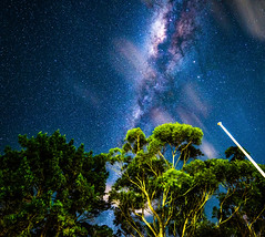 Stars over Jervis (silardtoth) Tags: trees australia astro background bay blue exposure green jervis landcsape long milky way nature new south wales nsw ocean sky stars milkyway newsouthwales
