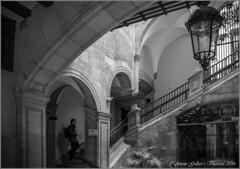 A la recerca del misteri dels pilars.  ( Barri Gtic - Barcelona) Esta fotografa est dedicada a mi buena amiga Nana. (Antoni Gallart i Vilarrasa) Tags: d800 barcelona catalonia catalunya catalua escales escaleras stairs mystery misterio misteri pilars pilares pillars interior interiores indoor