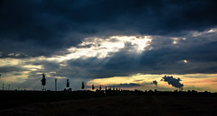 A force from above (marionrosengarten (off for holidays)) Tags: rays sunrays sky clouds fields light rowoftrees nature nikon sigma