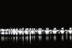 Pont de pierre (Sarah Devaux) Tags: fleuve gironde floue reflets lumières lampadaire nuit soirée pont de pierre bordeaux eau argentique mouvement ligne