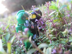 Love among the stars (Marley Mac) Tags: lego space scifi classicspace cs photography astronaut outside outdoors nature minifig fig minifigure marleymac green purple flower tyne