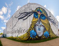 Love is Sacrifice (-Dons) Tags: rochester ny newyork usa muralart mural rochesterpublicmarket soto maxx242 wall jeffsoto flower panorama pano