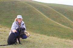 Downland (alasdair massie) Tags: sarah dog labradorpointercross holiday labrador scarpa vizler uffington ridgeway chalk downland