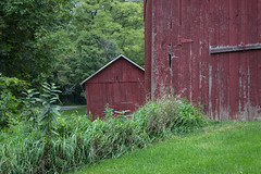 Red Farm Buildings (marylea) Tags: red barn rural 2016 sep8 farm sugarloaffarm