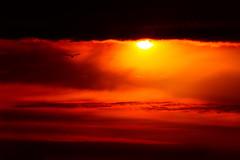 sunset (Andrew V. Zhigaloff) Tags: morning light sunset red sky orange sun sunlight color nature beauty weather yellow skyline clouds sunrise landscape dawn high twilight heaven bright dusk vibrant air horizon dramatic scene creation backgrounds awe majestic idyllic sunbeam tranquil cloudscape scenics stratosphere