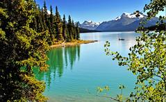 Maligne Lake in Jasper National Park (yeoldmenogynguide60) Tags: park lake canada rockies jasper canadian national alberta maligne