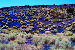Cinder Hills Overlook, Wupatki National Monument (Vern Krutein) Tags: travel nature landscape scenery desert natural geography scenes scenics southwestusa wupatkinationalmonument arizonanature geoform