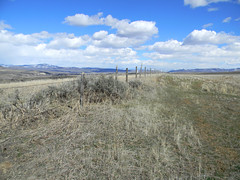 High Country Colorado (halseike) Tags: ranch old sky mountain mountains grass clouds fence wire colorado view farm barbed