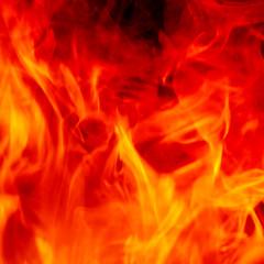Desk Rage (home) (Brett Jordan) Tags: wallpaper apple fire typography flames hell humour brett type wisdom fury x1 retina homescreen bello 2014 ipad bureaucrat scorn miltonfriedman brettjordan lockscreen retinadisplay ipad3 ipad4 2048x2048pixels ipadhidef ipad3rdgeneration ipadthirdgeneration 3145728pixels 4194304pixels 2048x1536pixels ipadretina ipad4thgeneration wwwx1ltduk x1printing ipadair ipadminiretina httpx1brettstuffblogspotcouk