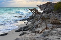 Parasols sur la plage (turgeon.johanne) Tags: cuba parasol plage