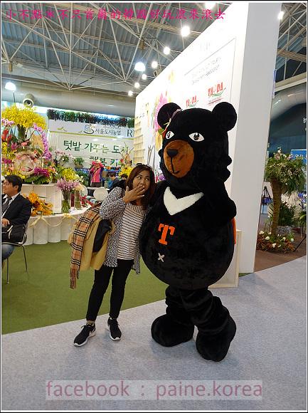 高陽國際花卉博覽 (62).JPG