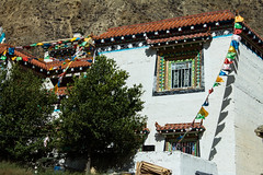 Prayer on a Tibetan House flags