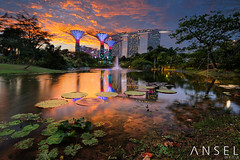 LITT UP (draken413o) Tags: travel sunset sky urban gardens by skyline architecture wow bay amazing pond singapore asia skyscrapers cityscapes places epic destinations vertorama