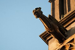 gargoyle - waterspuwer (petdek) Tags: sunset orange statue architecture cathedral gargoyle