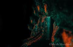 The Council (micahmoreland) Tags: fiction portrait reflection male film blackbackground pose dark movie mirror design robot scary paint neon experimental message body ominous space alien hologram evil science creepy fluorescent blacklight future cult scifi horror videogame sciencefiction demonic cyborg outerspace creature cinematic futuristic holographic
