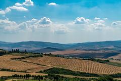 Pienza, Tuscany, Italy (chadjholland) Tags: italy clouds landscape wheat sony tuscany pienza sonya7rii