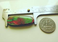 AMMOLITE STONE FOR SALE (The Ammolite) Tags: ammolite ammonite fossil mineral minerals rock gemstone アンモライ 斑彩石