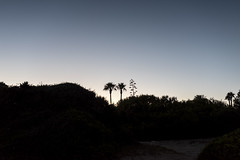 201607_Urlaub_Menorca-22 (www.arternative-design.com) Tags: balearen balearios balerischeinseln ciutadella d810 espana insel leuchtturm mahon mao ma meer menorca nikon nikond810 palmen sommer sonne sonnenuntergang spain spanien strand sun urlaub beach lighthouse summer sunset