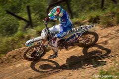 MaggioraPark - Ivo Monticelli (beppeverge) Tags: motocross bernardini cairoli monticelli lupino mx2 mxgp cervellin mxon philippaerts dp19 tc222 beppeverge maggiorapark magliazzurra