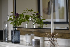 new fireplace (lesya2014) Tags: home fireplace candle lilac