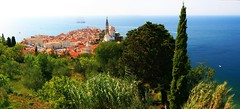 The peaks of Piran (Nanak26) Tags: cyprs cypress piran slovenia peaks pointes sharp eslovenia cloud sky sea serene adriatic istria panorama overview stitching hill 400d color couleur panoramic overlook city istr