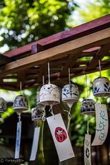 Wind-bell (Yorkey&Rin) Tags: japan tokyo bokeh july olympus chofu rin windbell  2016 jindaiji  em5   freshgreenleaves  leicadgsummilux25f14 t7101322