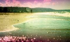 (Victoria Yarlikova) Tags: ilford expired film zenit analog scan lomo vintage old 35mm grain analogphotography sea beach darkroom traditionalphotography dof bokeh