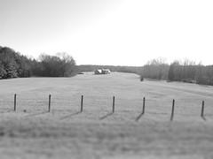 Light House (grant0825) Tags: light blackandwhite monochrome field composition fence focus highkey