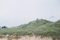 F1050006_lr (chi.ilpleut) Tags: summer film analog island july analogue 台灣 135mm expiredfilm kodakfilm 2016 底片 過期底片 故鄉 海島 島嶼 外島 ilovefilms kinmentaiwan 金門鎏金之島kinmen