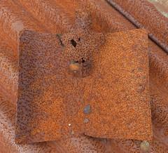 Spot the shovel (Charos Pix) Tags: rust iron shed shovel corrugatediron spade shedroof
