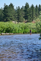 Fly Fishing (Rural Roads Photography) Tags: colorado platteriver flyfishing water river mountains landscape nikond7000