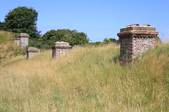 Fort Burgoyne - the ultimate green roof (bsafolkestone) Tags: fortburgoyne greenroof