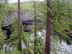 Devil's Bath (D-Stanley) Tags: devils bath alice lake loop vancouver island british columbia sinkhole cenote canada