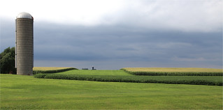 Iowa Farm Landscape