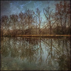 Reflections (fabiennej) Tags: hss iphone6s distressedfxapp water reflection slide sliderssunday