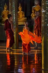 _MG_5263-le-17_04_2016_wat-thail-wattanaram-maesot-thailande (christophe cochez) Tags: burmes burma birmanie birman myanmar thailand thailande maesot myawadyy monk bonze novice religion watthailwattanaram travel voyage bouddhisme buddhism portrait