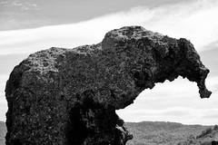Roccia dell'Elefante (claudio malatesta) Tags: roccia elefante elephant castelsardo italie italia sardegna sardaigne bw blackandwhite noiretblanc fuji fujifilmxt10 claudiomalatesta