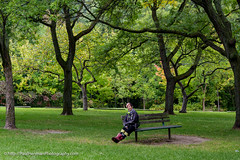 Parked in the park (Paul Henman) Tags: toronto torontophotowalks topwwwpw2016 photowalk httppaulhenmanphotographyca ontario canada 2016 topw worldwidephotowalk2016 wwpw2016