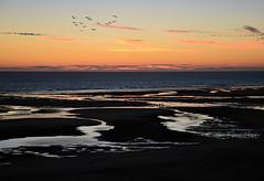 160806 smpH 160924  Thethi (thethi: pls read the 1st comment) Tags: plage mer sable eau ciel soir silhouette cte vacances aot t ctedopale france