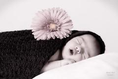 Baby newborn shooting (alexander.dischoe) Tags: newborn baby flower blume dslr dx nikon nikkor d7100 nikond7100 nikon18200mm art
