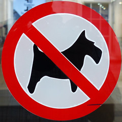 No dogs (Leo Reynolds) Tags: xleol30x squaredcircle sqset113 signdog signsafety signcirclebar groupdogsigns signno sign panasonic lumix fz200 xx2015xx sqset