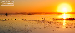 Scapes_004_RiaDeAveiro_Comp (Joao.Andrade_Photography) Tags: sunset portugal moody ria aveiro