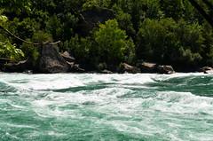 Rough Waters [Niagara Glen Nature Reserve - 19 August 2014] (Doc. Ing.) Tags: wild summer ontario canada nature water river niagarafalls niagara northamerica niagaraglen on 2014 niagarariver niagaraparkway