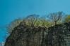 DSC03234 (Braulio Gómez) Tags: barrancadehuentitã¡n biodiversidad caminoamascuala canyon canyonhuentitan faunayflora floresyplantas guadalajara guardianesdelabarranca huentitã¡n ixtlahuacandelrão jalisco mountainrange mã©xico naturaleza paisaje senderismo sierra barrancadehuentitán barranca huentitán ixtlahuacandelrío méxico